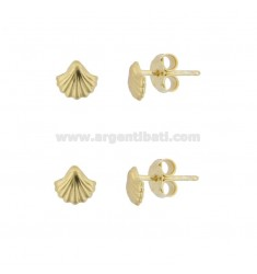 EARRINGS WITH LOBO SHELL 6X7 MM MM 2 SILVER SILVER TIT 925